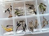 Nymphen-Auswahl für Fliegenfischen, Forellenfliegen inkl. Perlenköpfen Packung#303, 32 Stück