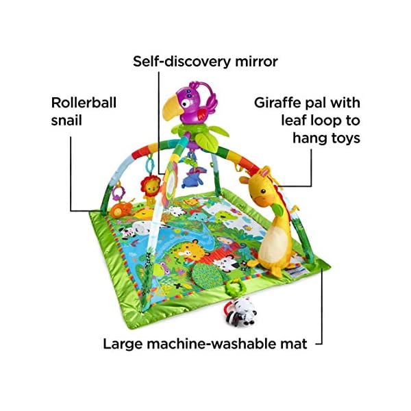 Fisher-Price DFP08 Rainforest Gym, Baby Playmat with Music and Lights, Suitable from Birth for New-Borns 3