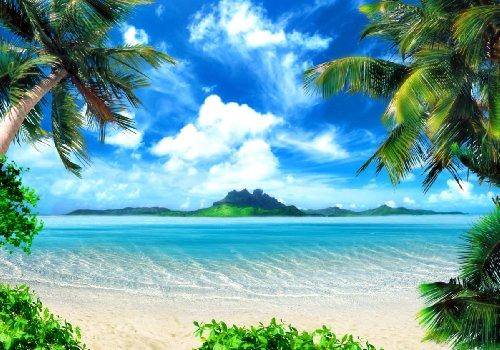 Küsten-inseln (XXL Poster 100 x 70cm (SF206) magical coast / Insel Küste Palmen Strand, weißer Sand, blauer Himmel (Lieferung gerollt!))