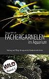 Fächergarnelen im Aquarium: Haltung und Pflege der aquaristisch bedeutenden Arten (Wild Shrimps Fächergarnelen 5)