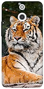 The Racoon Grip printed designer hard back mobile phone case cover for HTC One (E8). (snow tiger)