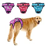 PETBABA Dog Nappies Female, 3 Pcs Period Pants, Reusable Washable Cover Up Panties, Adjustable Diapers Suitable Medium to Large Women Girl in Heat Season