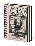 Harry Potter Carnet Bloc-Notes - Le Prisonnier d'Azkaban, Sirius Black Wanted (21 x 15 cm)