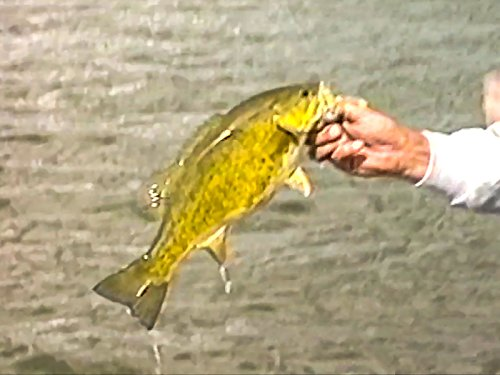 dolores-colorado-fishing-for-small-mouth-bass-with-floyd-preas