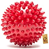 Foodie Puppies Rubber Stud Spike Ball (Medium)