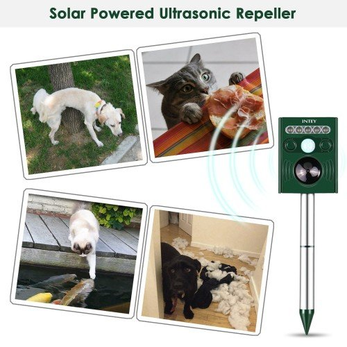 katzenschreck solar ultraschall tiervertreiber mit b. Black Bedroom Furniture Sets. Home Design Ideas