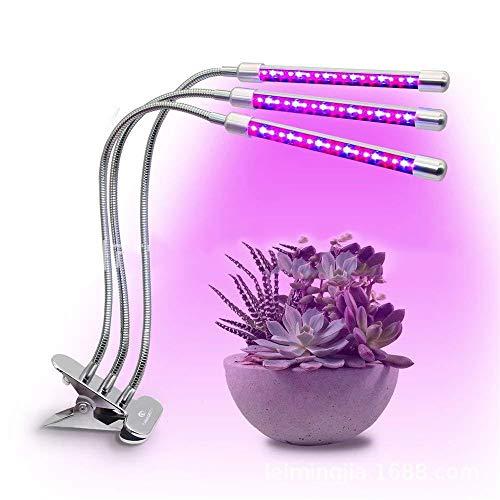 Lampe De Achat Pas Vente Hydroponie Cher thsQdxrCB
