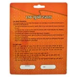 Shree Shyam Gems and Jewellery Natural1 Mukhi/One Faced Half Moon Shaped Rudraksha with Certificate Lab Test and X-ray Report, Standard, Brown