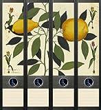 4er Set Ordnerrücken für breite Ordner Zitrone Obst Aufkleber Etiketten Deko 037