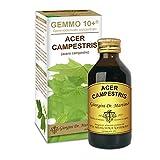 GEMMO 10+ Feldahorn 100 ml alkoholfreie Flüssigkeit