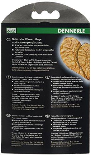 Dennerle 7004057 Nano Catappa Leaves - 2