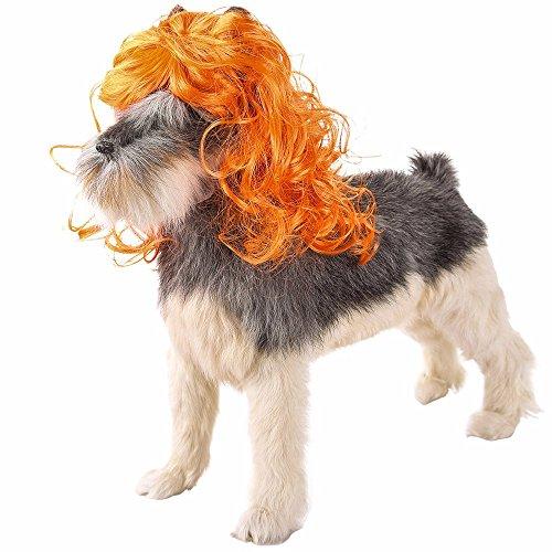 (Amphia - Haustier Hund Katze Modische Pet Punk Perücke Hut - Einstellbar: 20-60cm)