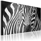 BD XXL murando Impression sur Toile intissee 120x80 cm 3 Pieces Tableau Tableaux Decoration Murale Photo Image Artistique Photographie Graphique zèbre 030216-14