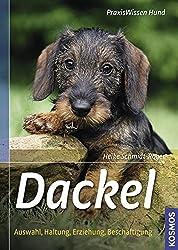 Dackel: Auswahl, Haltung, Erziehung, Beschäftigung (Praxiswissen Hund)