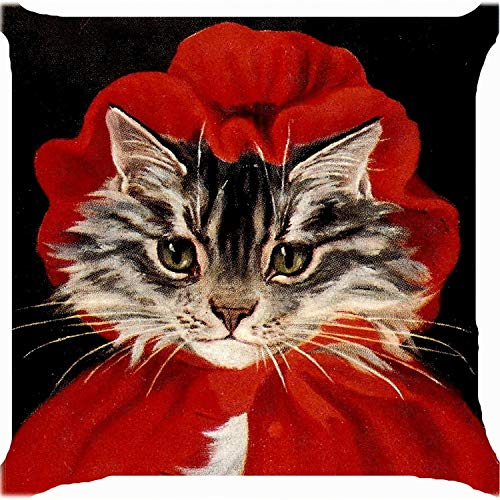 er Throw Pillow case 18 inch cat Girl red Riding Hood Cute Kitty Both Sides Image ziiper ()