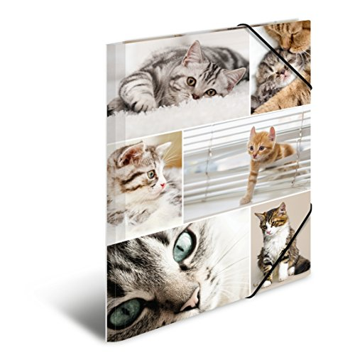 Herma 19212 Sammelmappe DIN A4 Karton, Serie Tiere, Motiv Katzen mit Gummi-Eckspanner, 1 Stück