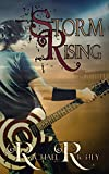 Storm Rising (The NightHawk Series 1) by Rachael Richey
