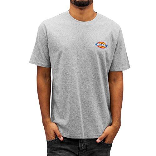 Dickies Uomo Maglieria / T-shirt El Paso