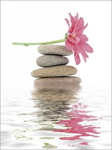 Artland Leinwand auf Keilrahmen oder gerolltes Poster mit Motiv Dinostock Zen Spa Steine mit Blumen...