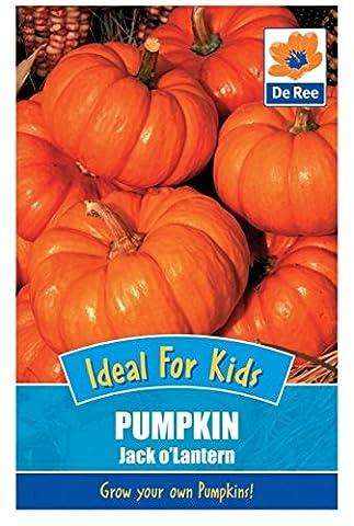 De Ree Ideal for Kids Pumpkin Jack O'Lantern Vegetable Seeds