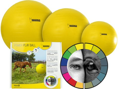 Onglet Live Chevaux Jeu Maximus Power Play Ball