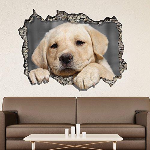 wallflexi-pared-pegatinas-3d-vista-a-traves-de-la-pared-perro-pared-arte-murales-extraible-adhesivo-