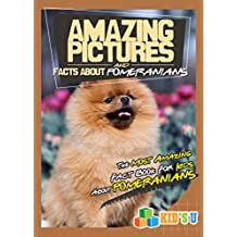 Amazing Pictures and Facts About Pomeranian : The Most Amazing Fact Book for Kids About Pomeranian  (Kid's U) (English Edition)