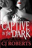 Captive in the Dark: Platinum Edition: Volume 1 (Dark Duet)