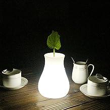 Veesee led luz de noche,lámpara de noche y escritorio y mesa,forma de florero, 16 colores,brillo,ajustable, USB recargable, control remoto,dimmable,batería de litio,vistoso para niños cuarto mesita regalo (Multi Color)