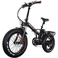 Vélo électrique pliable pour adultes Addmotor Motan, pneus larges, 750W, batterie au lithium 48V/11,6Ah, pour la montagne, la neige, la plage, M-150P7