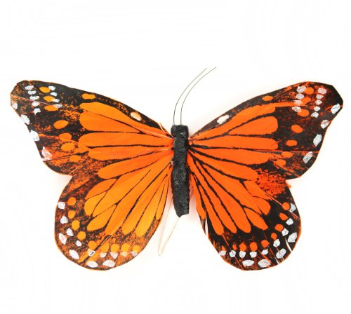 Touch of Nature 1-Piece Feather Monarch Butterfly on Wire for Arts and Crafts, 6-Inch, Orange/Nero