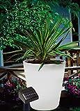 Pflanzenkübel Solar 12 LED Blumenkübel Kübel Blumentopf kaltweiße H39,5cm Ø37,5cm