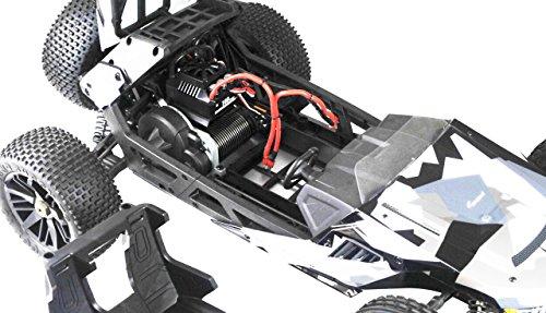 RC Auto kaufen Buggy Bild 3: Amewi 22183 Hammerhead V2 Brushless, Camouflage, M 1:6