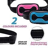 : Moytak Anti-Bell-Hundehalsband, sicher und hummane, kein Bellen, Kontrolle, um kleine und mittelgroße Rassen zu stoppen, kein Schockspray oder Hilfsstoffe - 2019 Upgrade Anti-Bell-Geräusch
