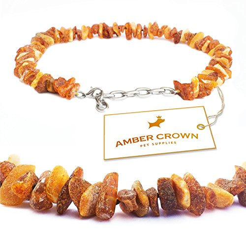 Baltic-Amber-Flea-and-Tick-Collar-with-Adjustable-Chain-for-Dogs-and-Cats-Untreated-Authentic-Baltic-Amber-Dog-Necklace-Natural-Tick-and-Flea-Control-and-Prevention-Gift-Ready-Packaging-Perfect-Presen