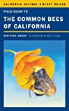 Best California Field Guides - Field Guide to the Common Bees of California: Review
