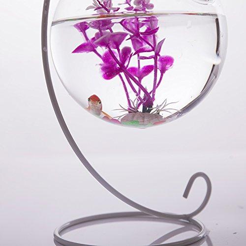 globe vase en verre suspendu 10cm support en fer 23cm hauteur d coration pour maison jardin. Black Bedroom Furniture Sets. Home Design Ideas