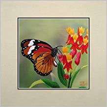 King Silk Art 100% Handmade Embroidery Multiple Unframed 30x30 cm Colorful Butterfly On A Flower Oriental Wall Hanging Art Asian Decoration Tapestry Artwork Picture Gifts 33012U_33024W
