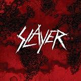 Painted Blood (180 Gram) [Vinyl LP]