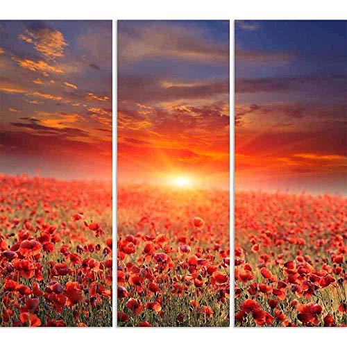 ArtzFolio Sunset Over Poppy Field Split Art Painting Panel On Sunboard 19.8 X 18Inch -
