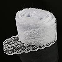 Paor 10 Meters Vintage Style Lace Ribbon Trimming Bridal Wedding Scalloped Edge 47mm (white 10M)