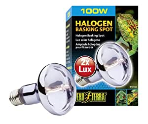 Exoterra Ampoule Halogène Basking Spot pour Reptiles et Amphibiens 100 W