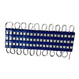 A1 Signage 0.72-Watt 20 x 3-LED Module Light Strip (Pack Of 2, Blue)