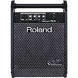 Roland Enceinte Monitoring - DS8