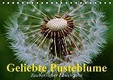 Geliebte Pusteblume. Zauberhafter Löwenzahn (Tischkalender 2019 DIN A5 quer): Die Verwandlung vom Löwenzahn zur Pusteblume (Geburtstagskalender, 14 Seiten ) (CALVENDO Natur)