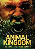 Animal Kingdom: Complete Third Season (3 Dvd) [Edizione: Stati Uniti]