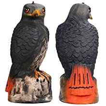 Frofine Realistic Falcon Decoy Bird Deterrent, Garden Outdoors Eagle, Bird Repeller Eagle Garden Décor Yard Eagle Plastic Falcon Statues Scare Away Birds/Pigeon/Seagull/Crow