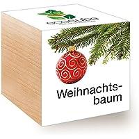 Suchergebnis auf f r weihnachtsbaum im topf garten for Nordmanntanne im topf