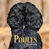Poules - calendrier 2018