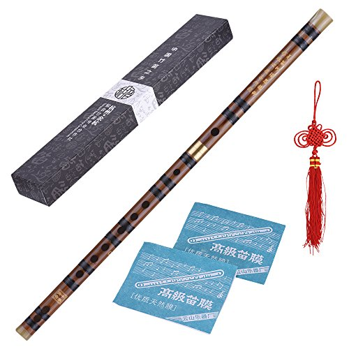 ammoon Steckbare Bitter Bambusflöte Dizi Traditionelle handgemachte chinesische Musikholzblasinstrument Schlüssel von G-Studie Stufe Professionelle Leistung